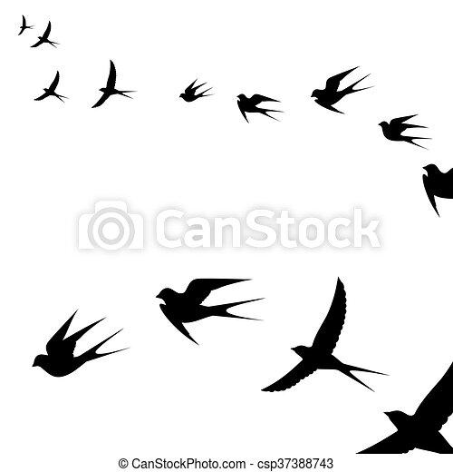 a flock of flying birds - csp37388743