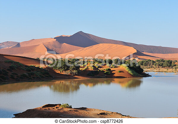 A flooded Sossusvlei in the Namib - csp8772426