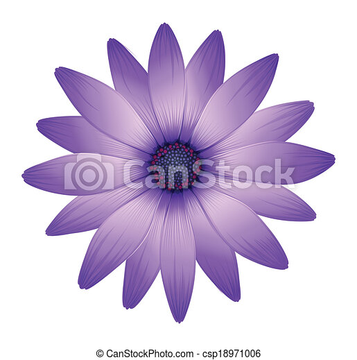 Illustration of a fresh purple flower on a white background vector a fresh purple flower csp18971006 mightylinksfo