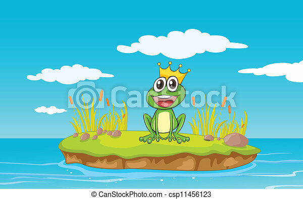 a frog and a water - csp11456123