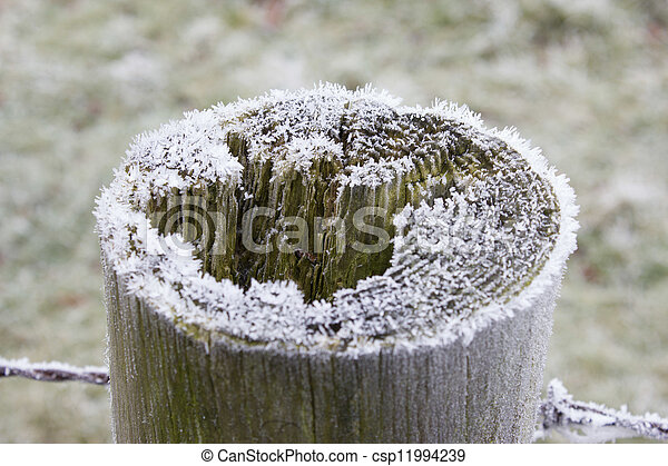 A Frosty Fence Post - csp11994239
