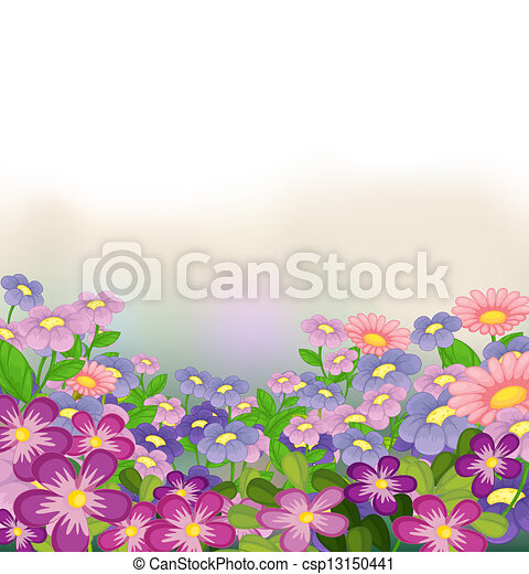 A garden of colorful flowers - csp13150441
