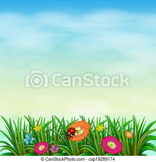 A garden with colourful flowers - csp19289174