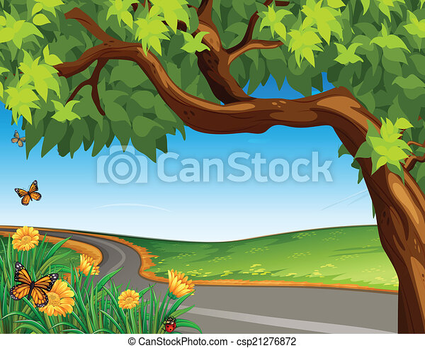 A giant tree at the road - csp21276872