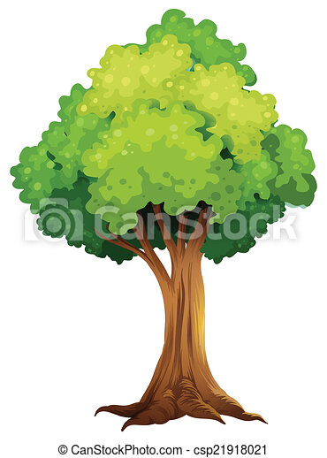 A giant tree - csp21918021