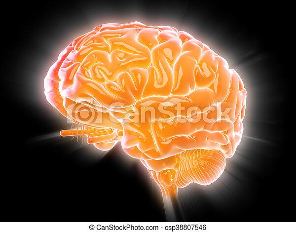 a glowing brain - csp38807546