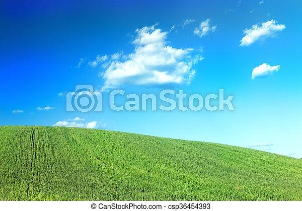 a Green field - csp36454393