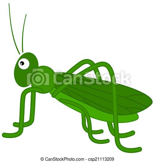 a green grasshopper - csp21113209