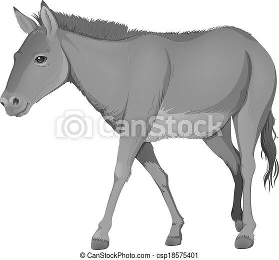 A grey donkey - csp18575401