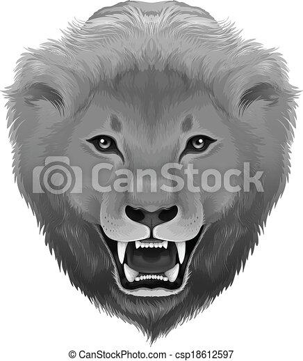 A grey lion - csp18612597
