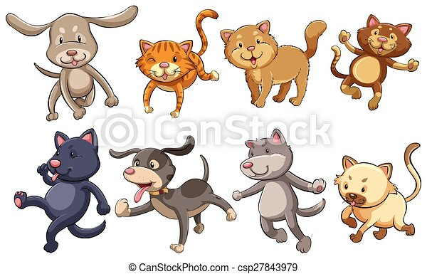 A group of playful cats and dogs - csp27843979