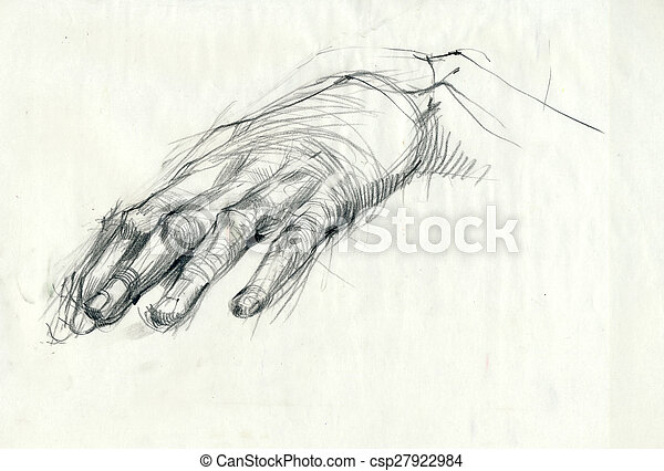 a hand drawing - hand, palm - csp27922984