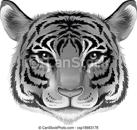 A head of a tiger in grey color - csp18663178