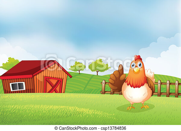 A hen at the farm - csp13784836