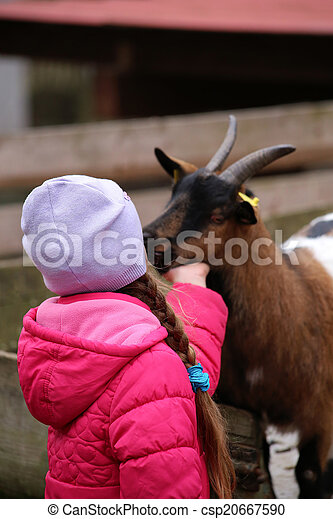 a little girl with a goat - csp20667590