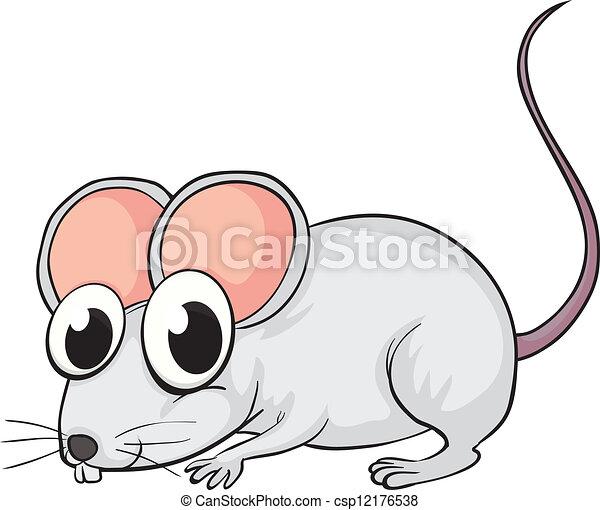 A mouse - csp12176538