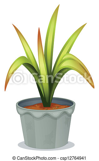 A non-flowering plant on green house plants, purple house plants, blue house plants, lavender house plants, tropical house plants, moss house plants, orange house plants, evergreen house plants, easy to take care of house plants, cacti house plants, flowers house plants, dead house plants, perfect house plants,