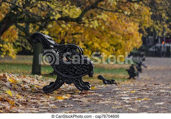 A park bench in autumn season - csp76704600