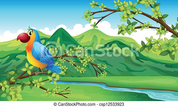 A parrot near the riverbank - csp12533923