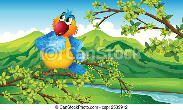 A parrot near the riverbank - csp12533912