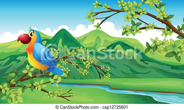A parrot near the riverbank - csp12725601