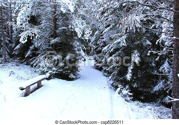 A path - csp8226511