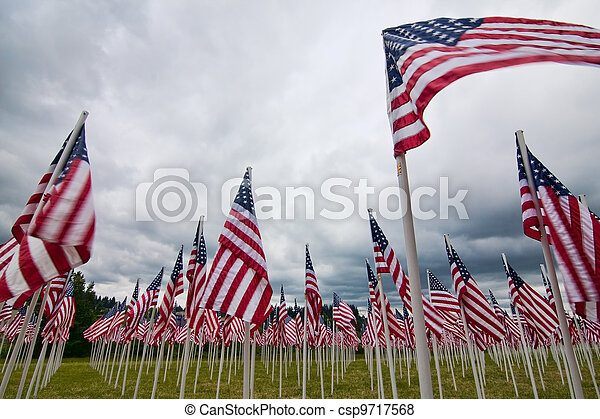 A patriotic arrangement of american flags representing fallen soldiers with each individual flag. - csp9717568