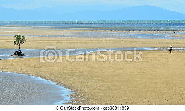 A person walks on a a wild beach in Queensland  Australia - csp36811859