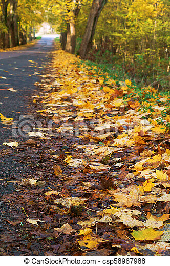 a picturesque autumn highway, trees with yellow leaves on the road - csp58967988