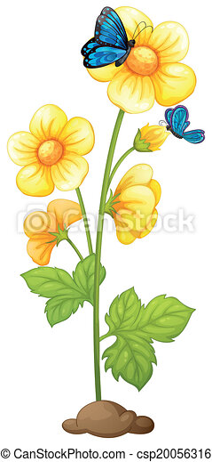 A Plant With Blooming Yellow Flowers Illustration Of A Plant With