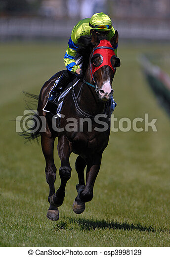 A race horse in action during a race. - csp3998129