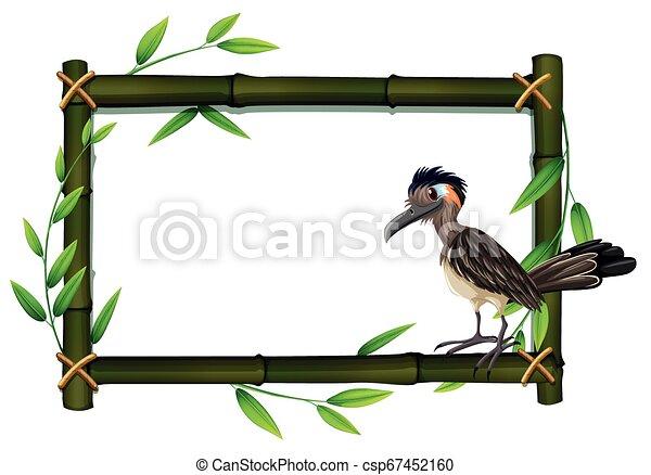A roadrunner on bamboo frame - csp67452160