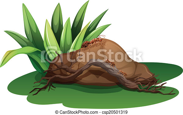 Line Drawing Grass : Illustration of a rock near the grass with wood and ants