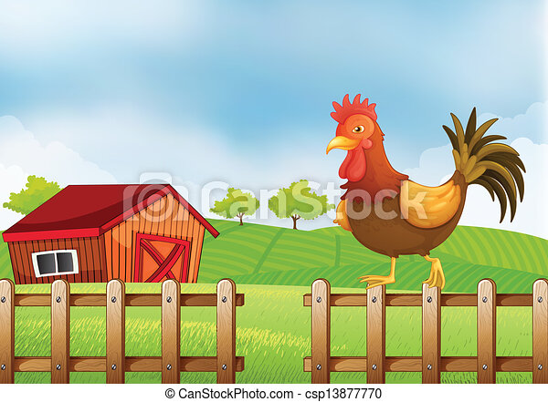 A rooster above the fence - csp13877770