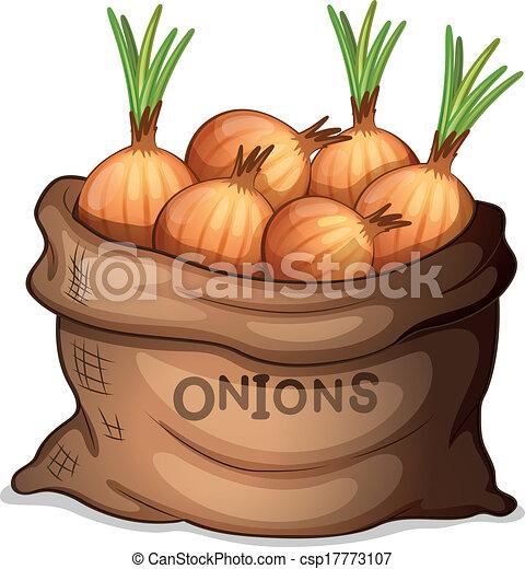 A sack of onion - csp17773107