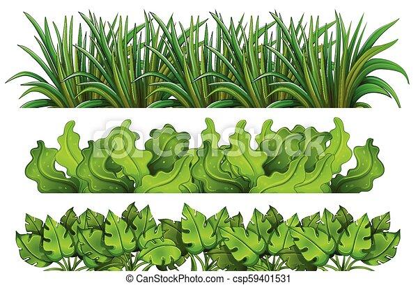 A set of green grass - csp59401531