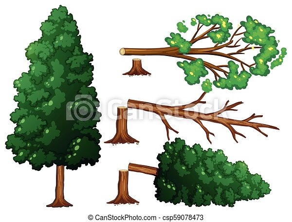 A Set of Tree Being Cut - csp59078473