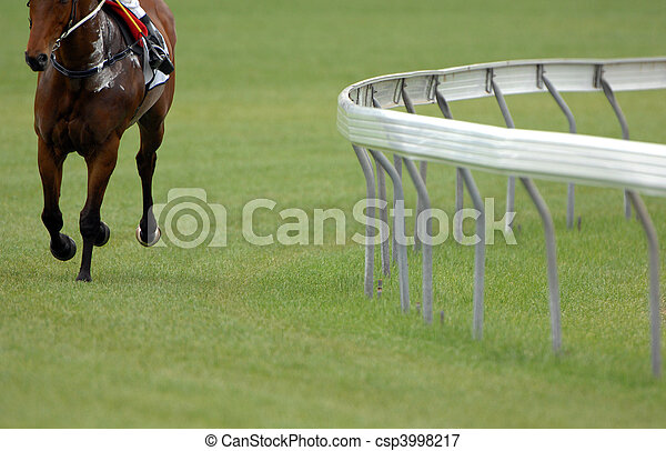 A single race horse on an empty track. - csp3998217