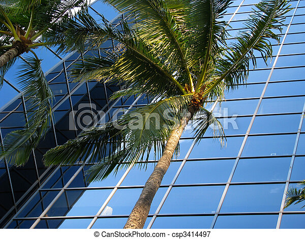 A sleek, modern office building with palm trees - csp3414497