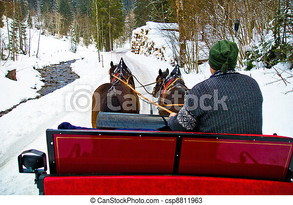 a sleigh is pulled by two horses. romance in the winter holiday. - csp8811963