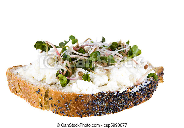 A slice of bread with poppy seeds, with cottage cheese and radish sprouts - csp5990677