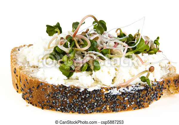 A slice of bread with poppy seeds, with cottage cheese and radish sprouts - csp5887253