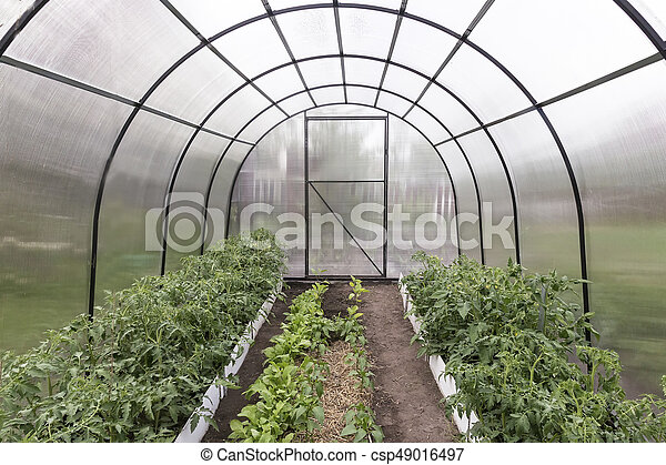 Fabulous A Small Greenhouse For Agricultural Plants Interior Design Ideas Philsoteloinfo