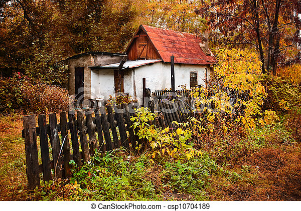 a small house in the autumn forest in the village - csp10704189