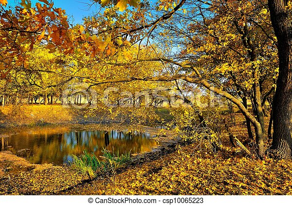 A small lake in the autumn forest - csp10065223