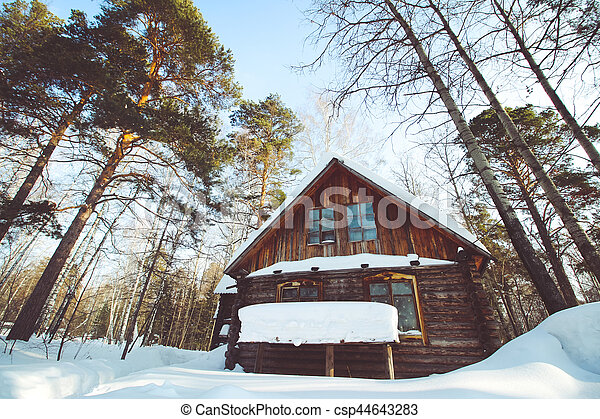 A small wooden hut in the forest - csp44643283
