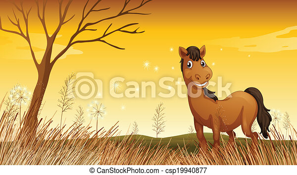 A smiling horse - csp19940877