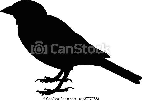 a sparrow silhouette vector - csp37772783