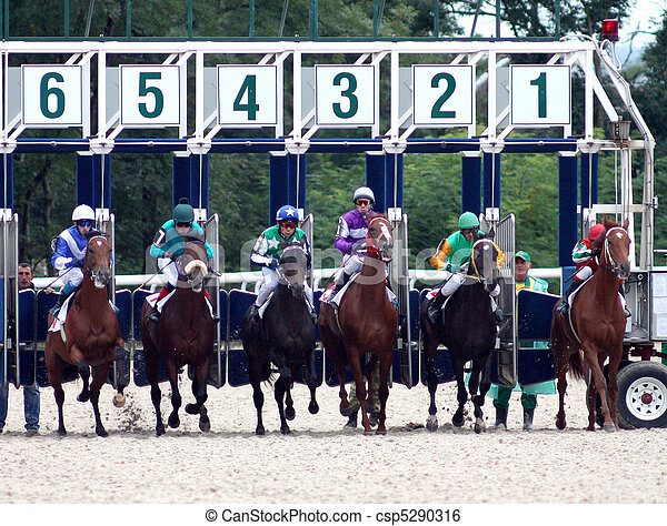 A startgate full of horses about to start the race. - csp5290316