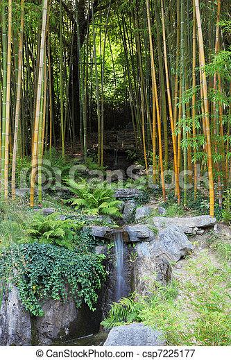 A stream in a bamboo grove - csp7225177